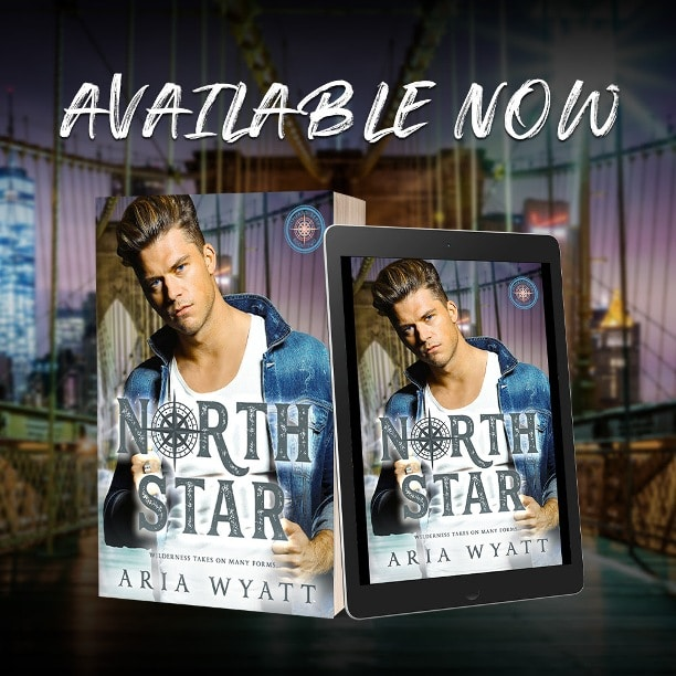 North Star by Aria Wyatt  - available
