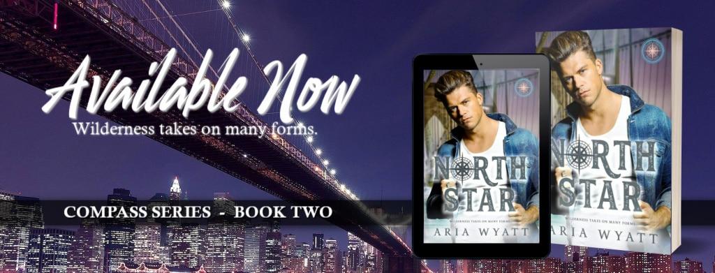 North Star by Aria Wyatt  - banner