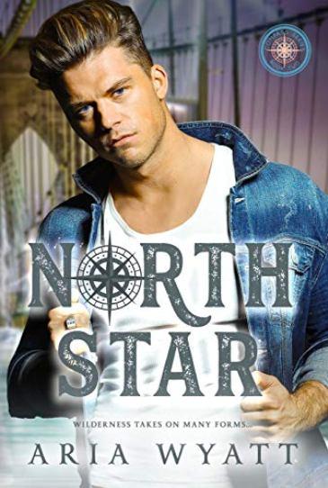 North Star by Aria Wyatt  - cover