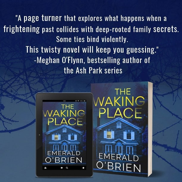 The Waking Place by Emerald O'Brien - review