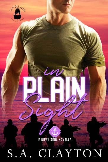 In Plain Sight by S.A. Clayton - cover