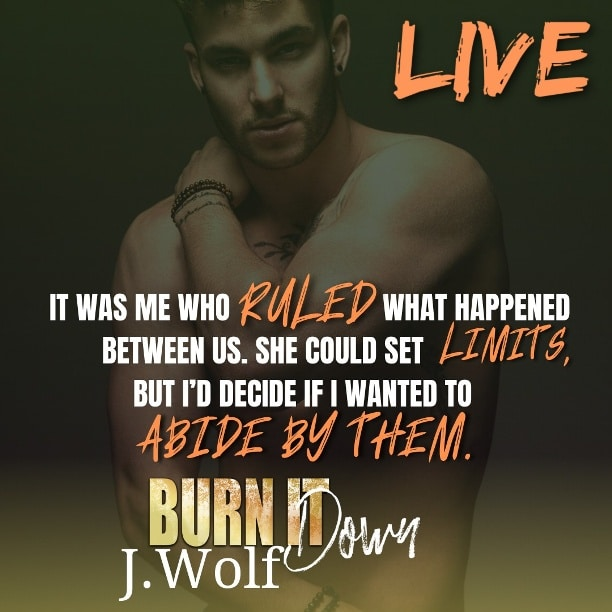Burn it Down by J. Wolf - live