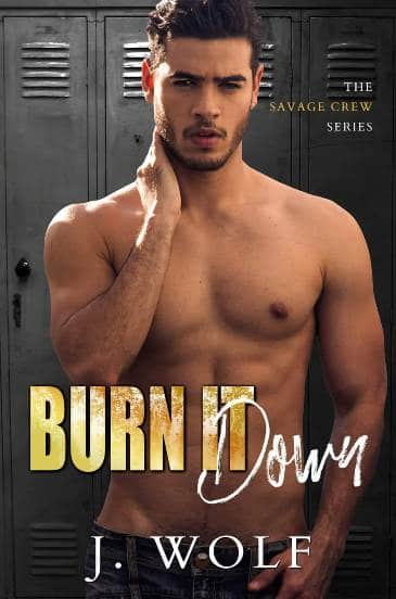 Burn it Down by J. Wolf - cover