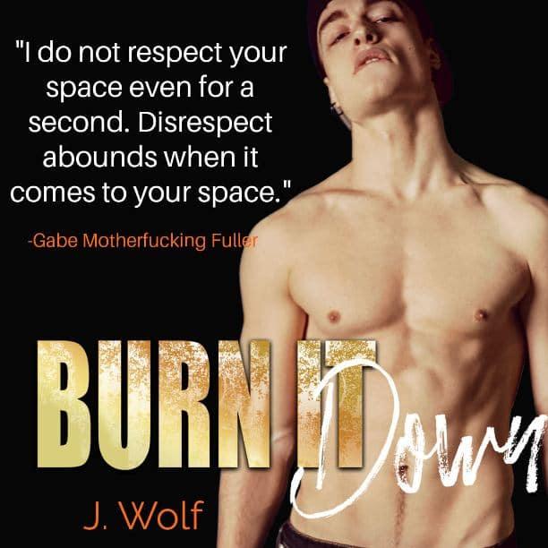 Burn it Down by J. Wolf - disrespect