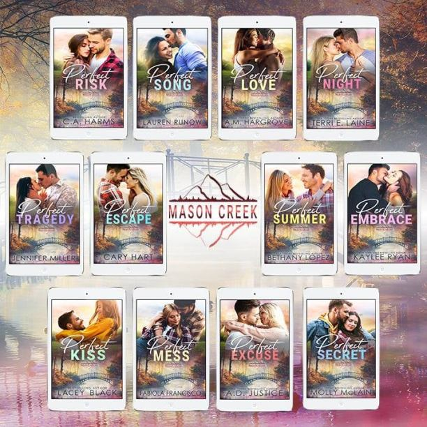 Perfect Secret by Molly McLain - series